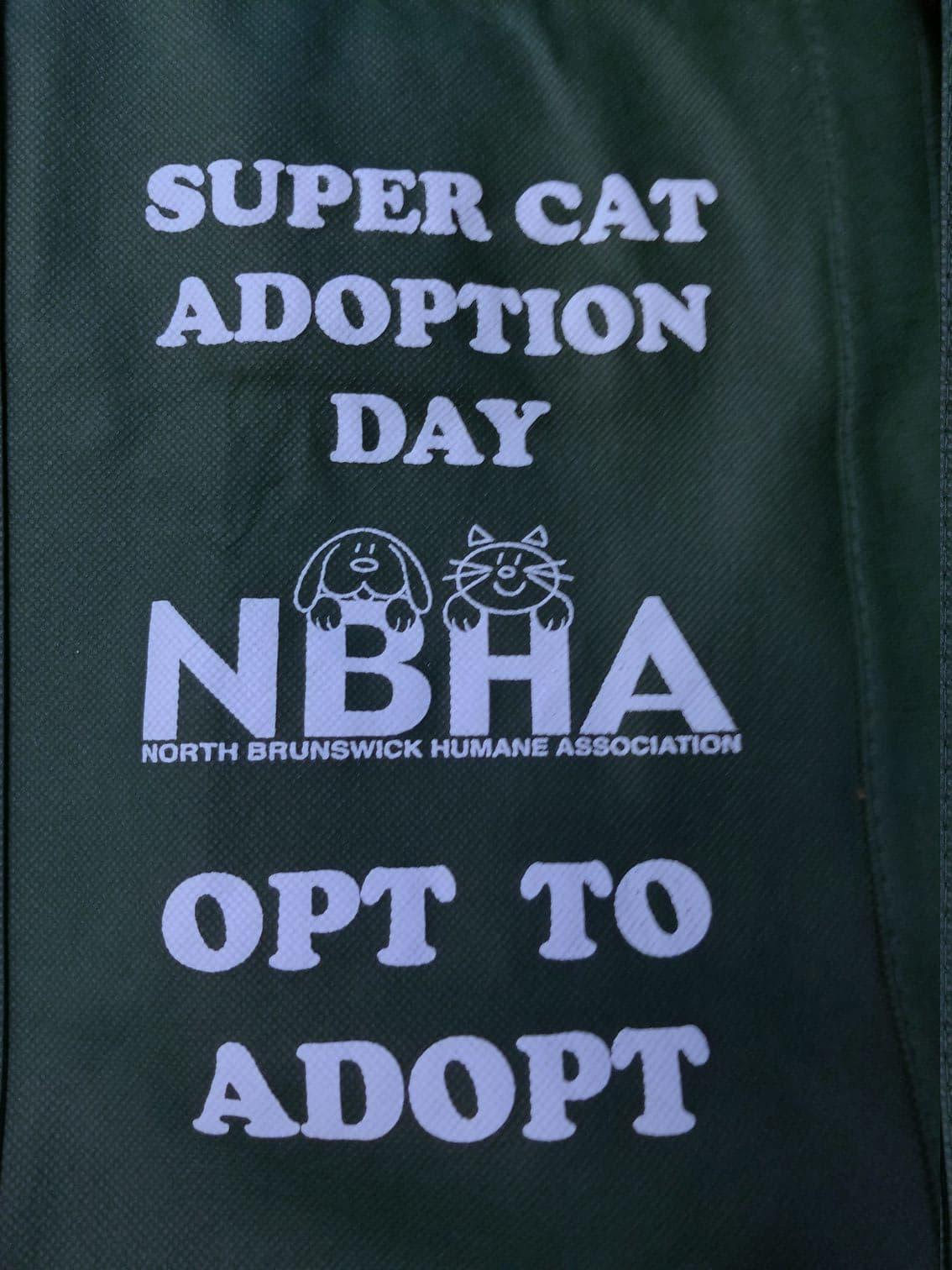 2019 Super Cat Adoption Day Event Gallery North