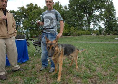 NBHA DOG WALKATHON 2010 218_968x648