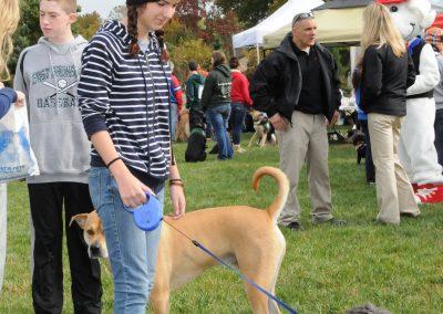 NBHA Dog Walk-a-Thon -098