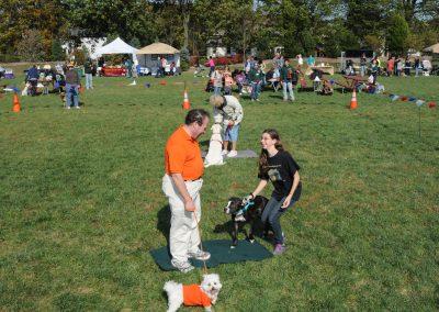 NBHA Dog Walk-a-Thon -459