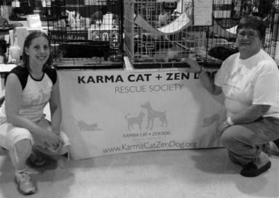 Karma Cat 2
